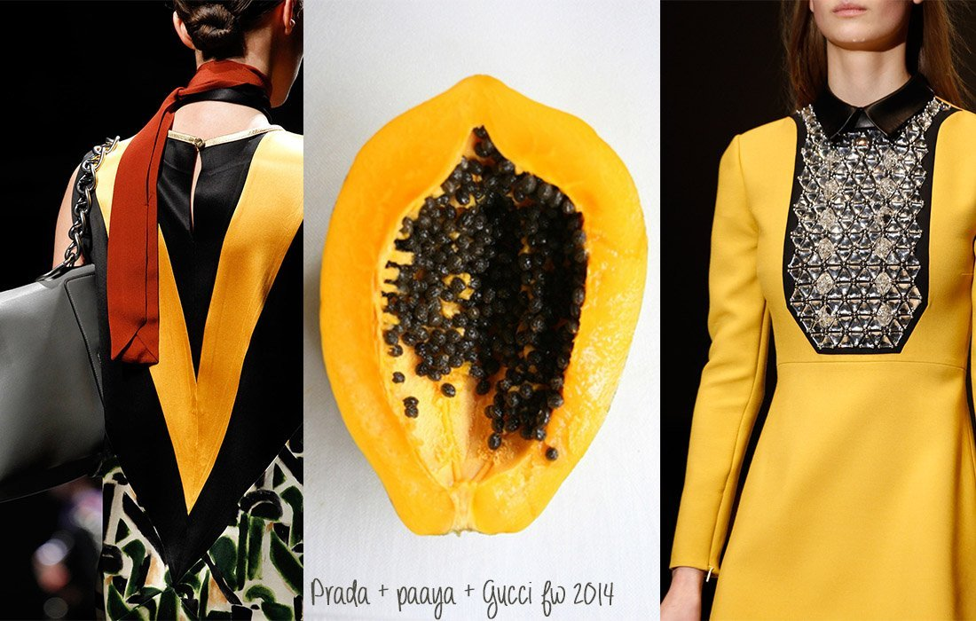08_prada papaya gucci