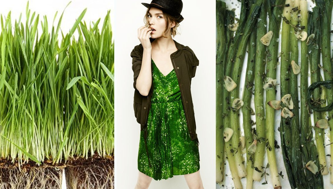 orto fashion oliver recipes 1