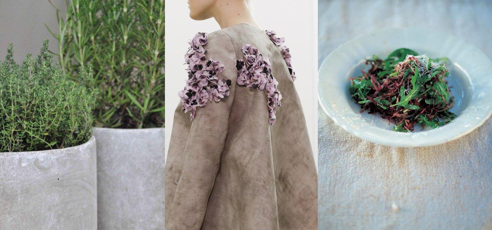 orto fashion oliver recipes 4