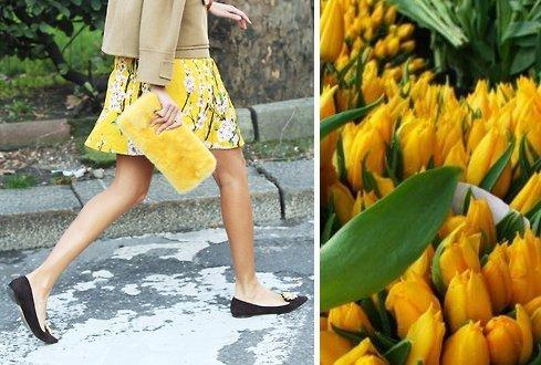 mani e tulipani 2