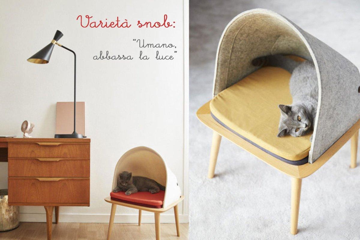 Cucce Design Per Cani cucce di design per animali domestici: quando cane e gatto