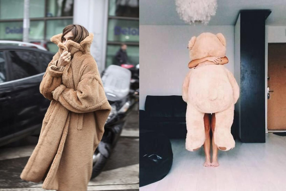 cappotto teddy bear