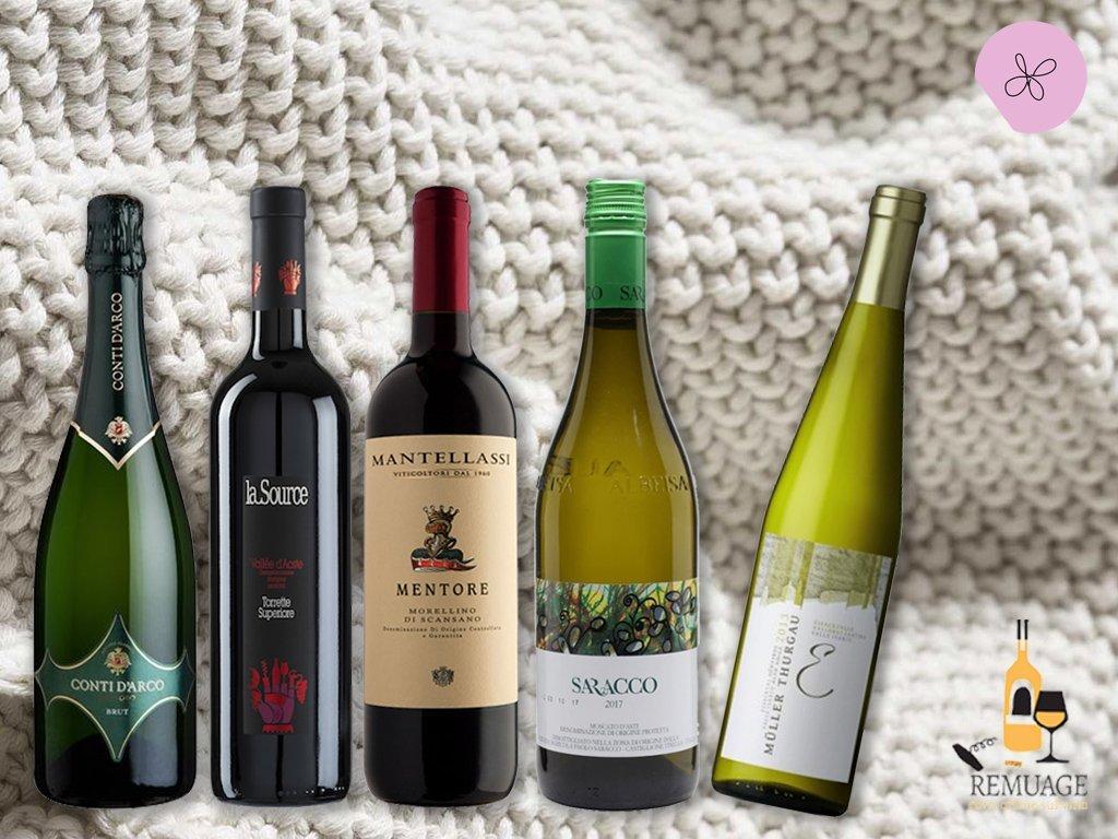 5 vini italiani